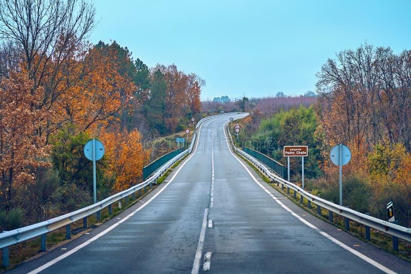 与路的秋天场面在La的维拉,埃斯特雷马杜拉森林里 西班牙 免版税库存图片