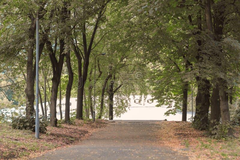 与路的秋天场面在Letchworth国家公园秋天路的森林里 免版税库存图片