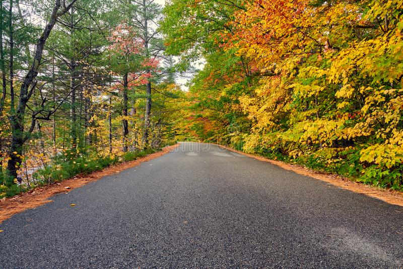 与路的秋天场面 库存照片