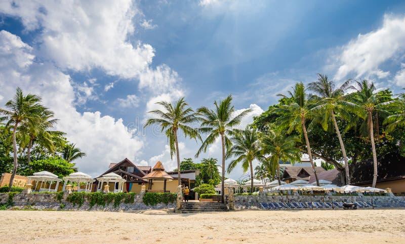 与躺椅和伞的热带海滩胜地 库存图片