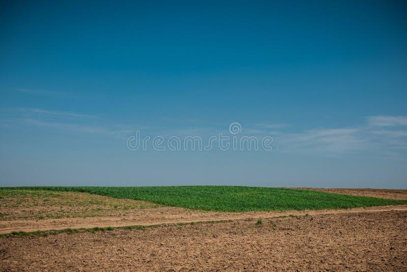 与轮子轨道的未使用的领域在麦子土地附近的春天 与蓝天的土纹理 国家土领域纹理 库存照片