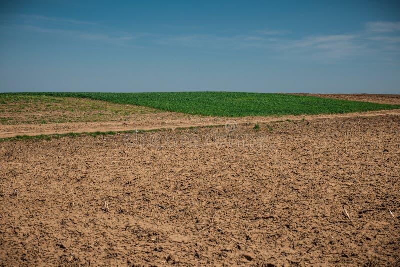 与轮子轨道的未使用的领域在麦子土地附近的春天 与蓝天的土纹理 国家土领域纹理 库存图片