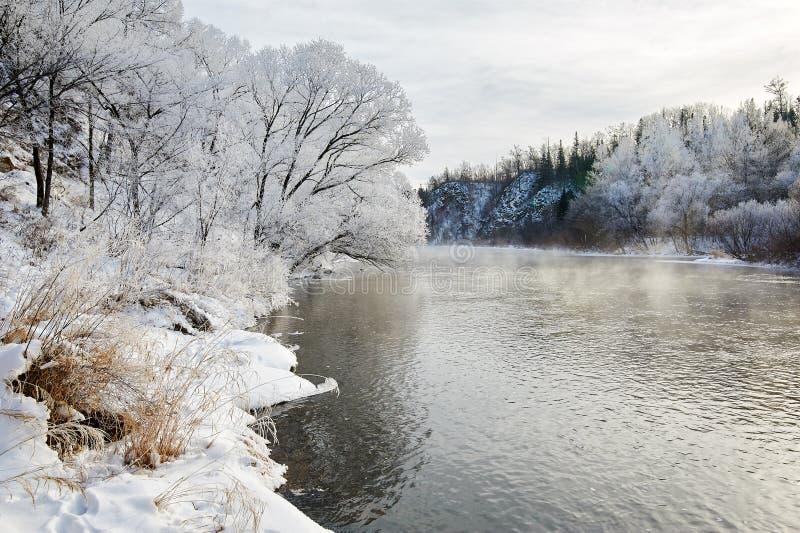 与软的霜和河的树 免版税库存图片