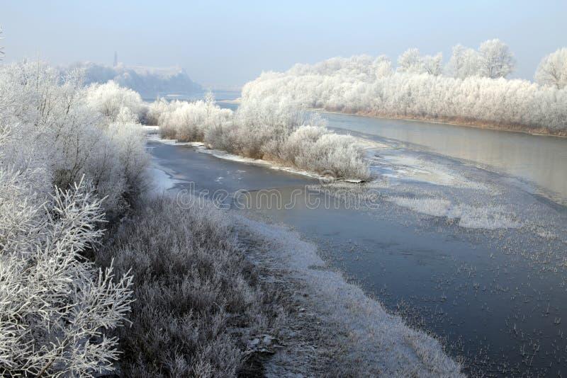 与软的霜的河风景在树 库存图片