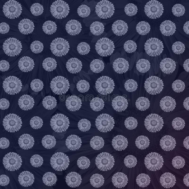 与轻的樱草属花的豪华花卉背景 免版税库存图片