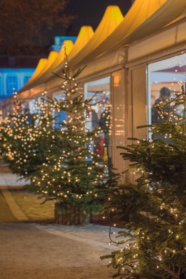 与轻的装饰的圣诞树 库存照片