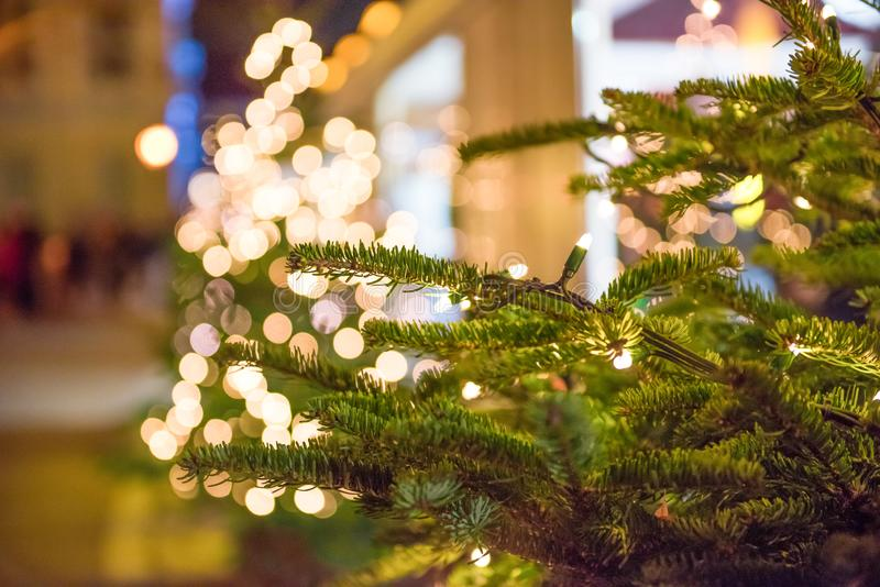 与轻的装饰的圣诞树 免版税库存图片