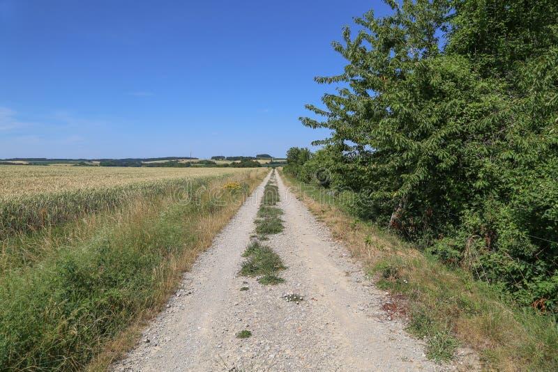 与进入距离的路的风景 免版税库存照片