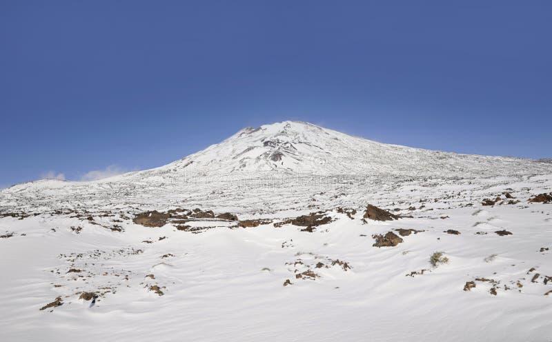 与远景的晴天往Pico在雪盖的Viejo在泰德峰国家公园,特内里费岛,加那利群岛,西班牙 免版税图库摄影