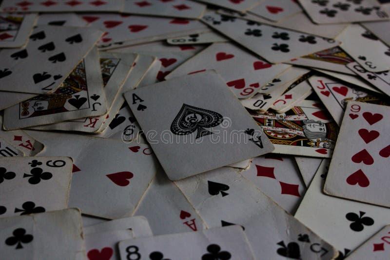 与选择的卡片的说谎的卡片在作为说笑话者夫人的上面 免版税库存照片