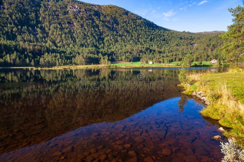 与透明的山湖的挪威风景 免版税库存照片