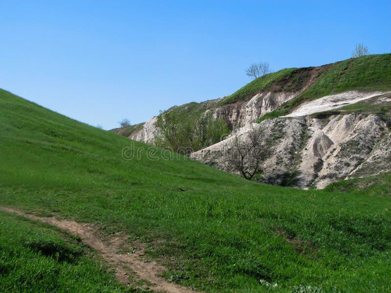 与道路、新鲜的绿色绿草和树的白垩小山 库存照片
