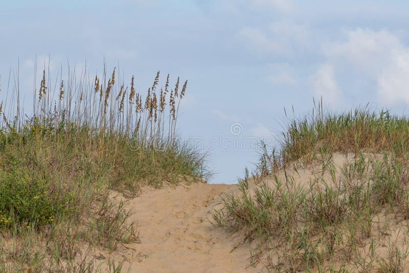 与道路和草的沙丘 免版税库存照片