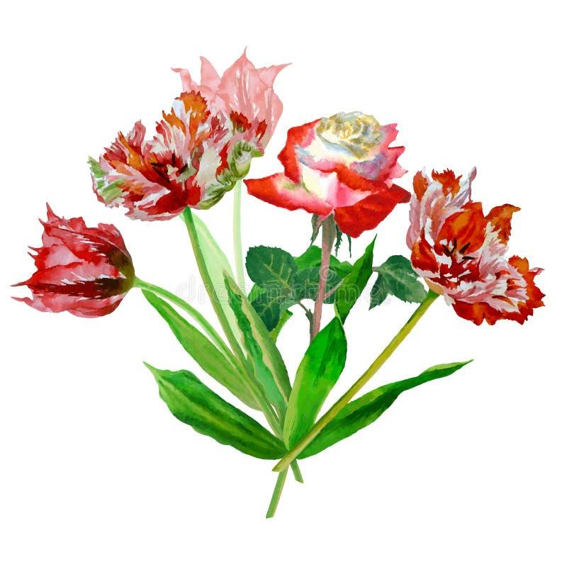 与郁金香和玫瑰01的背景 向量例证
