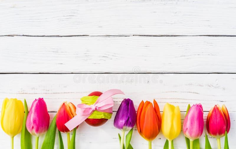 与郁金香的复活节彩蛋在白色木头,五颜六色的愉快的复活节背景开花 库存图片