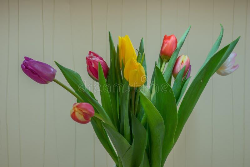 与郁金香的美丽的花束 免版税库存图片