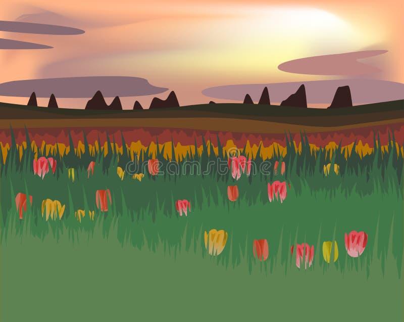 与郁金香的领域的抽象例证与日落的在平的d 皇族释放例证