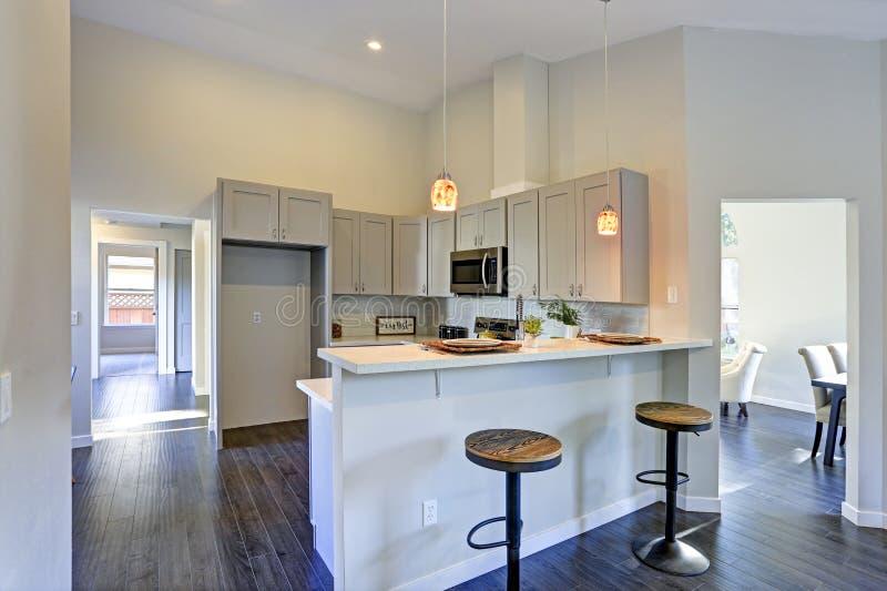 与酒吧样式厨房的浅灰色的厨房室内部 库存照片