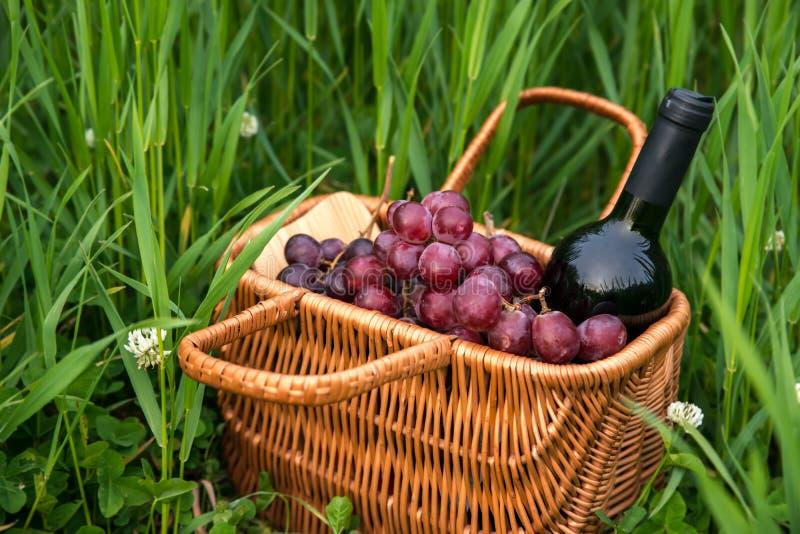 与酒瓶和葡萄的野餐篮子在绿草草坪 库存图片