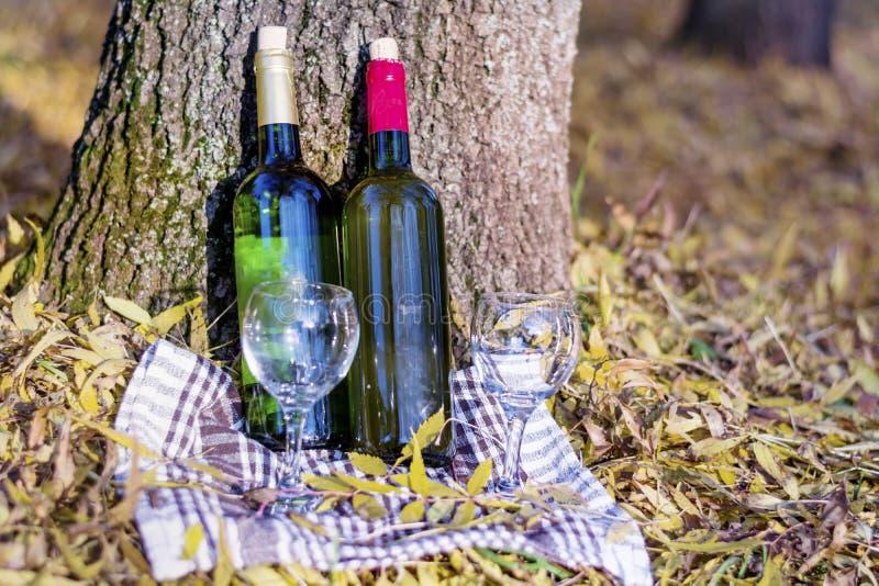与酒瓶和玻璃-浪漫日期的秋天野餐 图库摄影