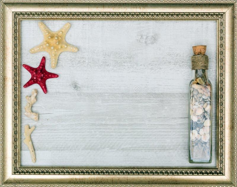 与里面海星的被镀金的画框 库存照片