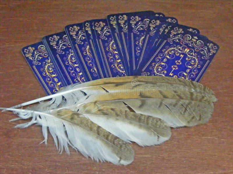 与野生森林猫头鹰不可思议的羽毛的占卜用的纸牌  免版税库存图片