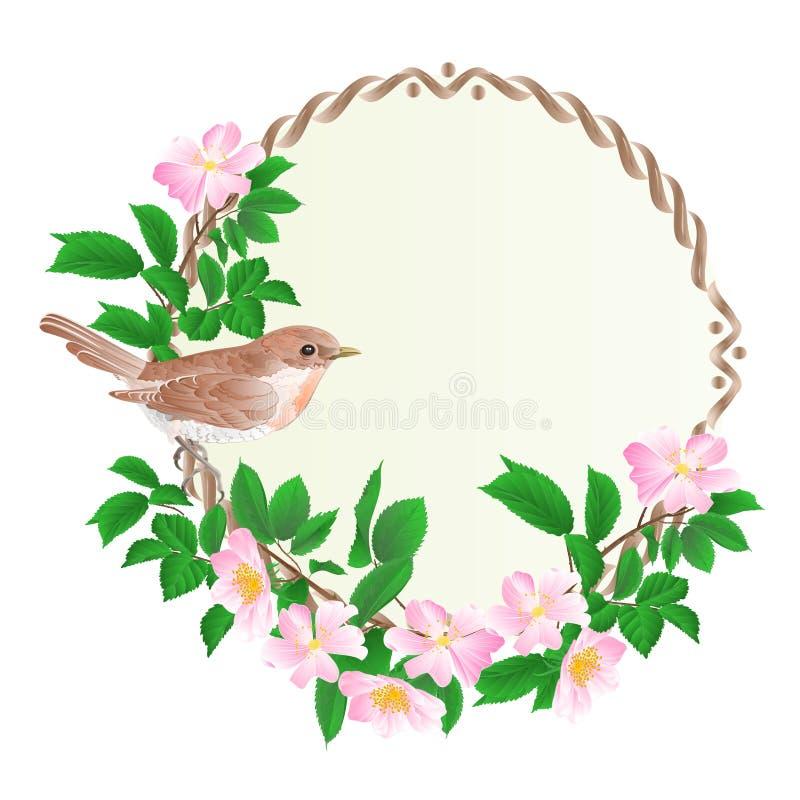 与野生玫瑰和逗人喜爱的小唱歌鸟葡萄酒的花卉圆的框架欢乐背景传染媒介 向量例证