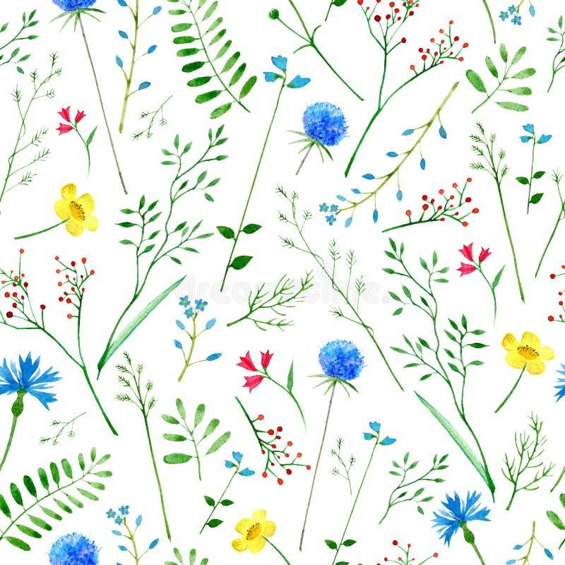 与野花和草本的五颜六色的花卉样式 皇族释放例证