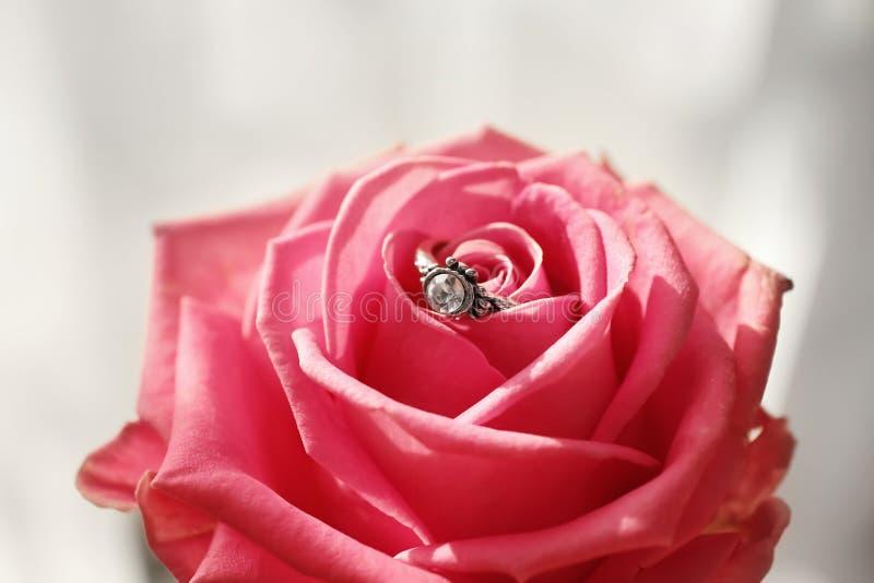 与金刚石的美好的圆环在玫瑰,特写镜头 免版税库存图片