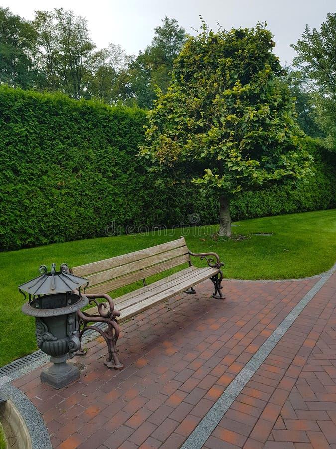 与金属元素的长木凳在公园 在背景中一棵树和高绿色树篱从灌木秋天 免版税库存图片