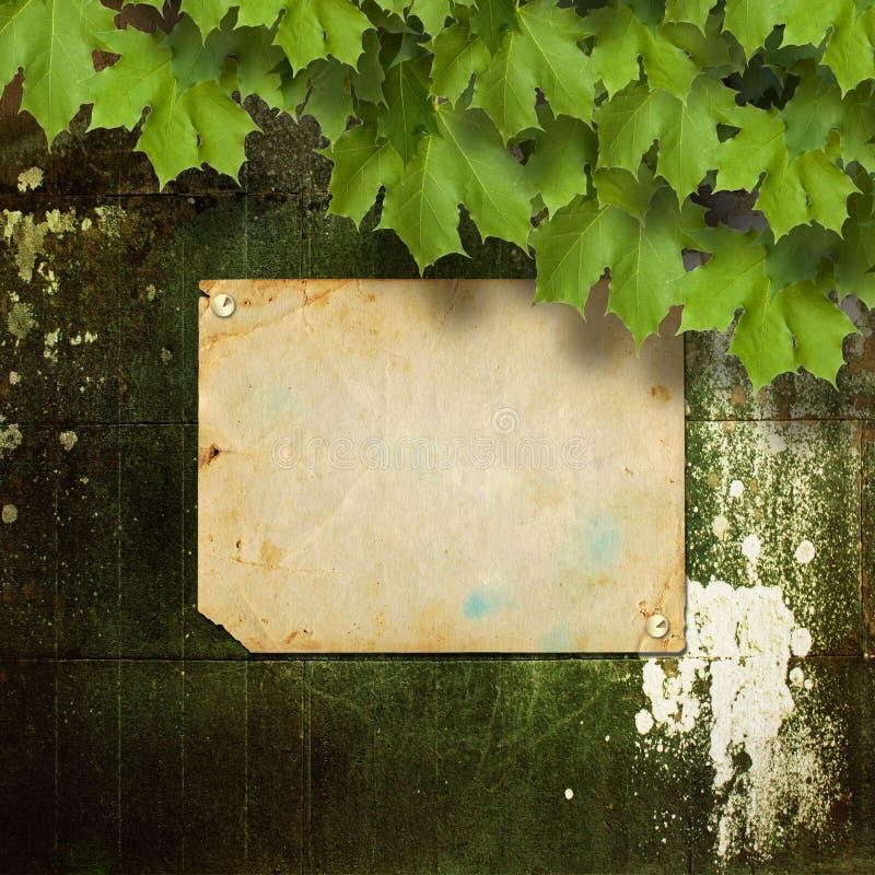 与金属按钮和绿色分支的老公告 免版税库存图片