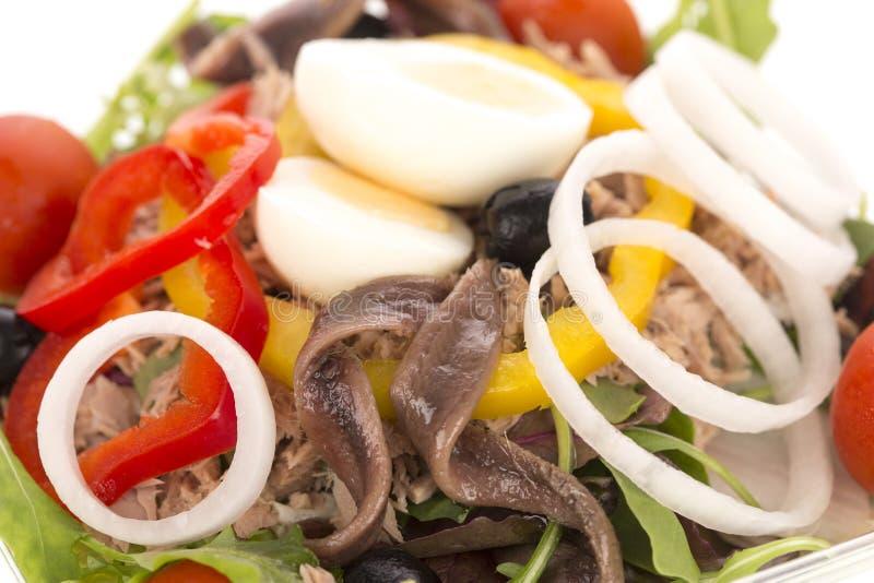 与金枪鱼、鲥鱼和煮沸的鸡蛋的凉拌生菜 免版税库存照片