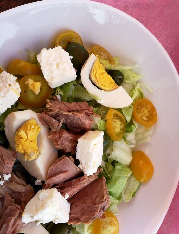 与金枪鱼和西红柿的新鲜的沙拉 库存照片