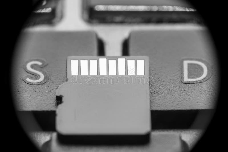 与金联络的黑微sd卡片在与字母S和信件D的钥匙 库存图片