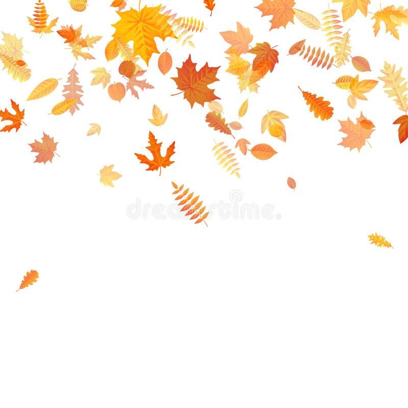 与金黄槭树,橡木和其他的秋天背景叶子 10 eps 皇族释放例证