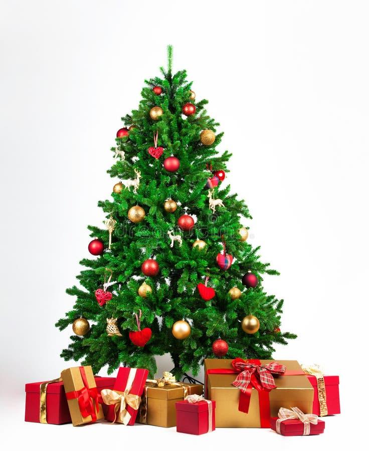 与金黄和红色的圣诞树提出在它下 免版税图库摄影