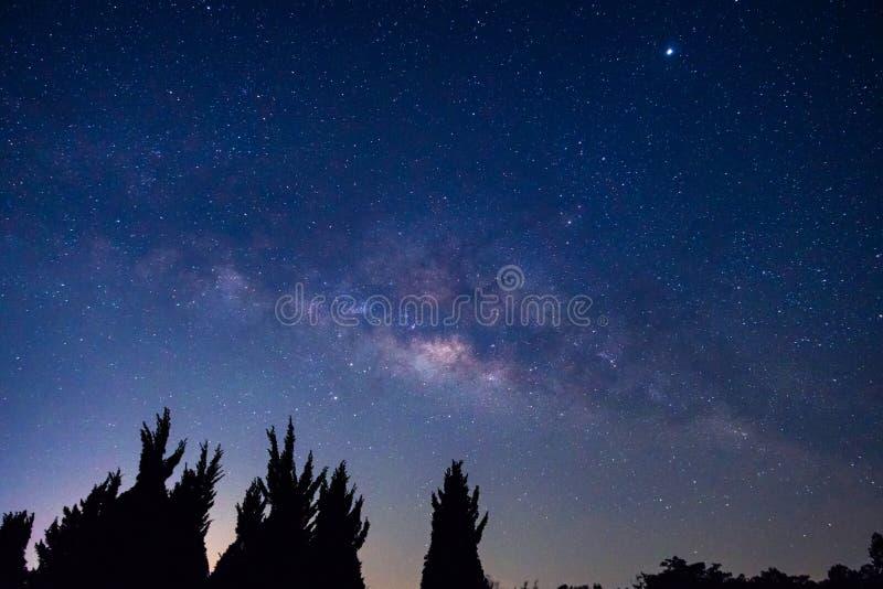 与银河星系的夜空 库存照片