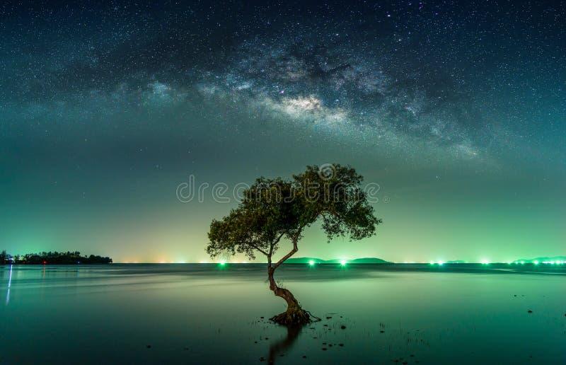 与银河星系的风景 夜空星形 库存照片