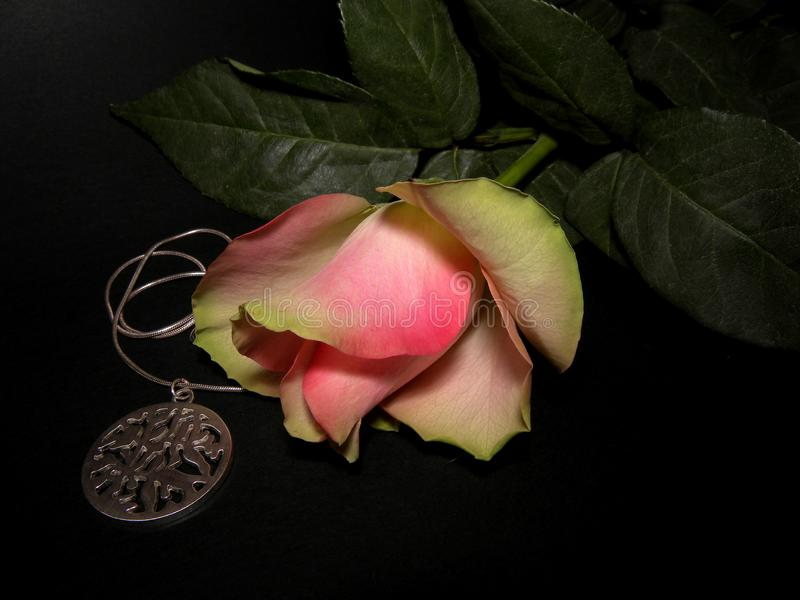 与银色项链的美丽的桃红色玫瑰 向量例证