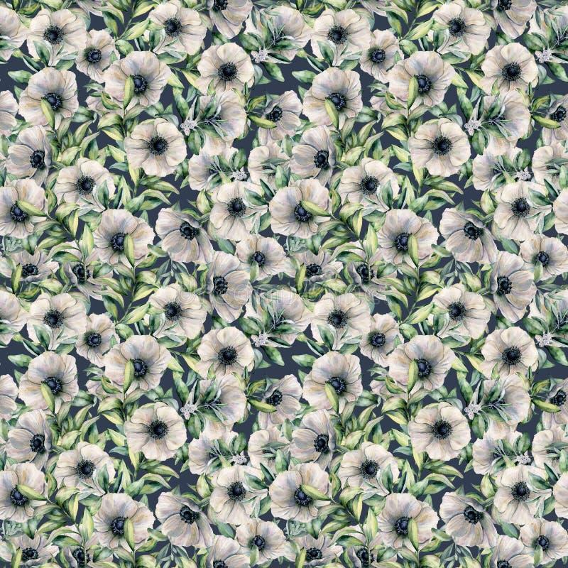 与银莲花属的水彩无缝的样式 与被隔绝的白花和叶子的手画花卉例证  库存例证