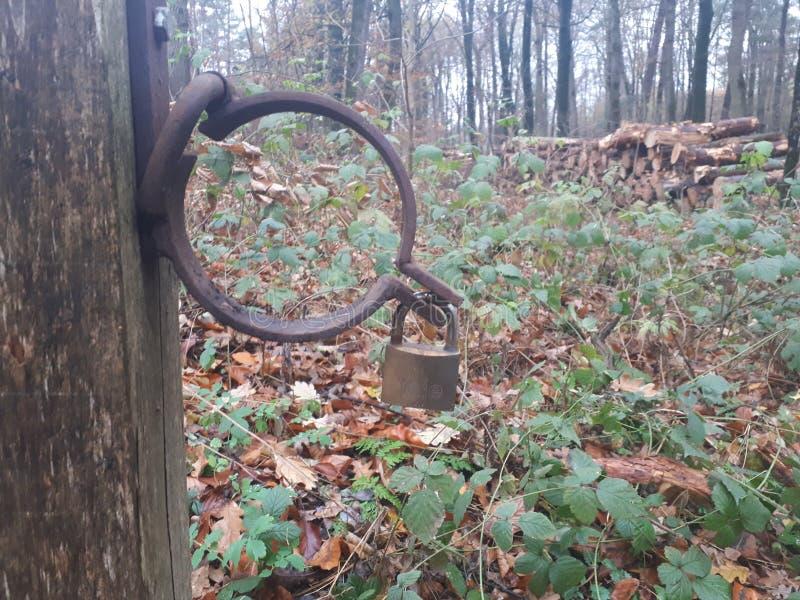 与锁的一个生锈的铁圆环 库存图片