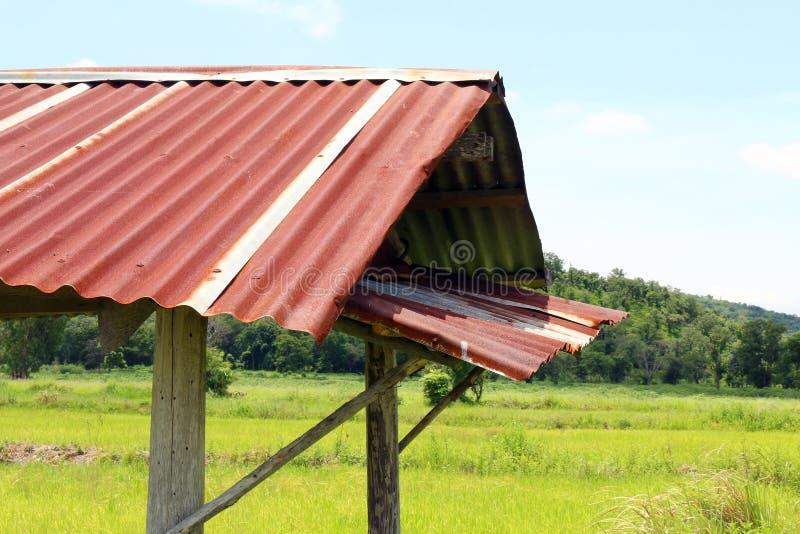 与锌屋顶的小屋老在稻田关闭 库存图片