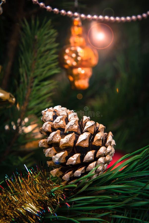 与锥体的云杉的分支和球,在背景的欢乐光 库存照片