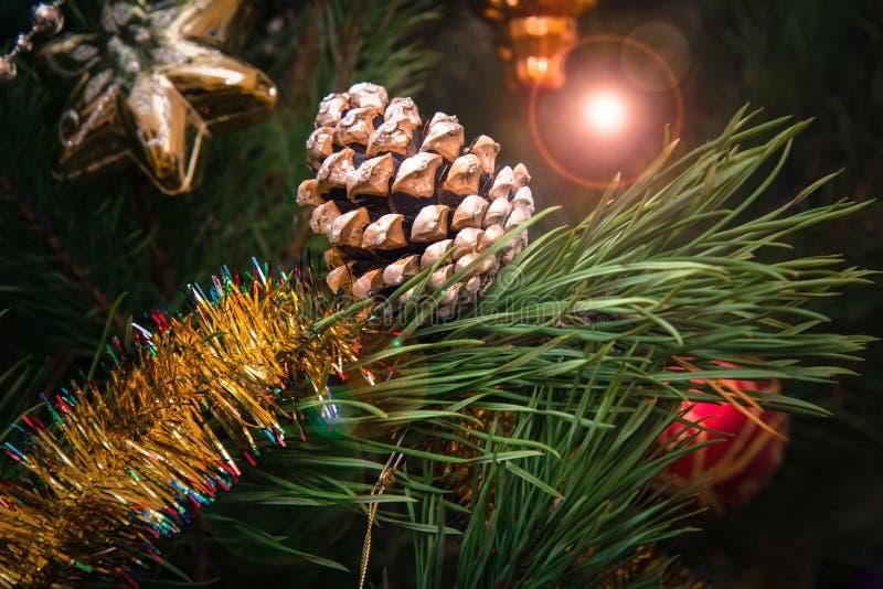 与锥体的云杉的分支和球,在背景的欢乐光 免版税库存照片