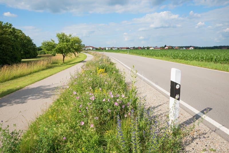 与锦葵属alcea和其他野花,蜂的nectarplants的路旁耕种 免版税库存图片