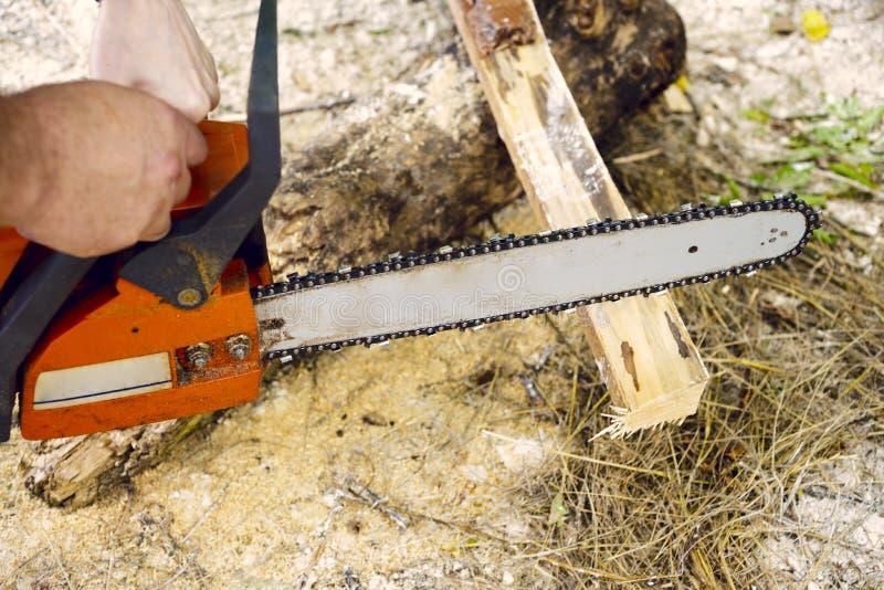 与锯的锯切木头 免版税库存照片