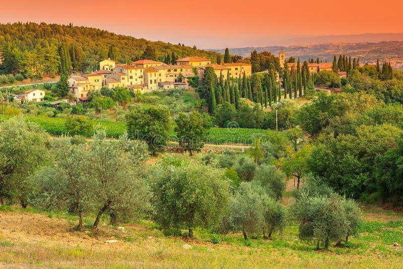 与镇和橄榄树种植园的托斯卡纳风景小山的 库存图片
