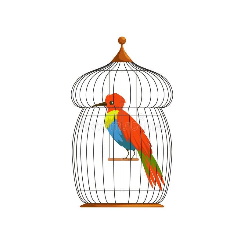 与长期的大鸟,精采地绿色,蓝色和红色羽毛 热带动物漫画人物在老导线笼子的 平面 库存例证