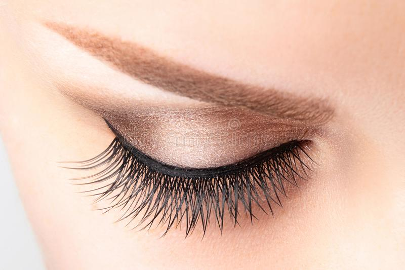 与长的假睫毛、美好的构成和浅褐色的眼眉的女性眼睛 库存照片