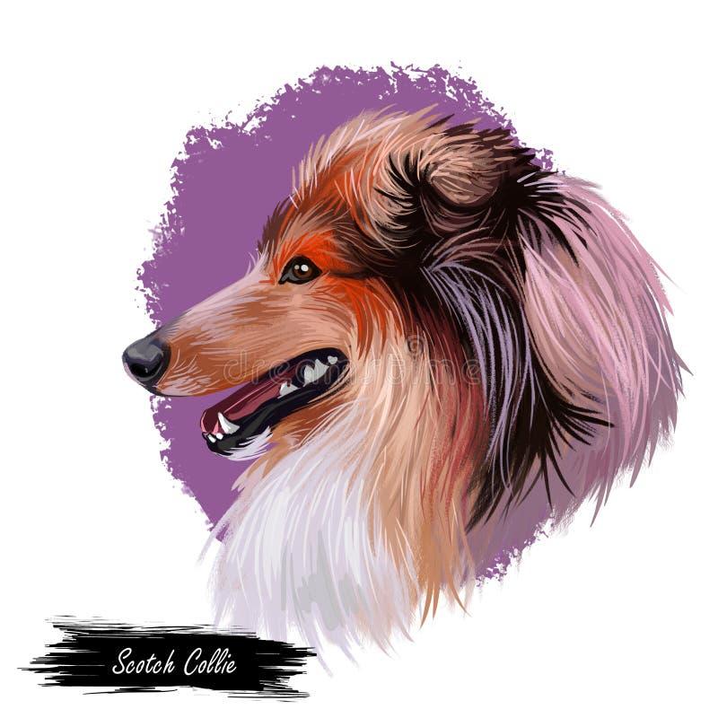 与长的毛皮,伸出舌头宠物手拉的画象的毛茸的家畜的刻痕大牧羊犬宠物 图表剪贴美术 皇族释放例证